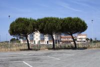 http://mail.simonanstey.com/files/gimgs/th-72_Tuscany2017_MG_0861_v2.jpg